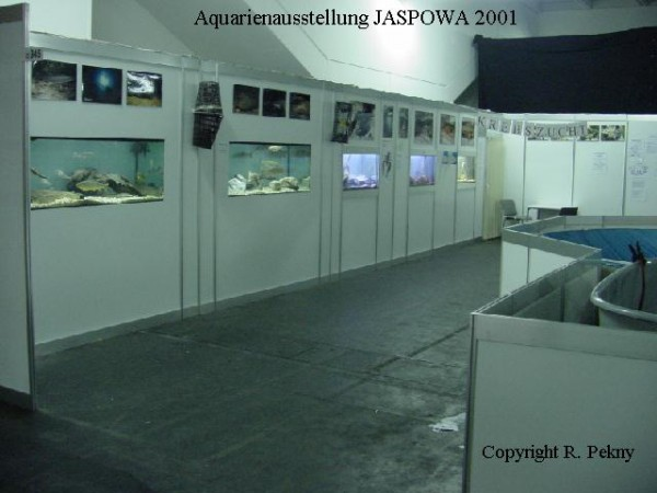 jaspo01-2