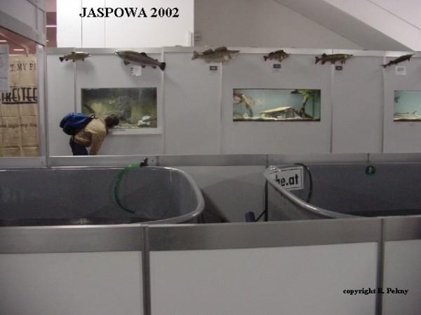 jaspo02-5b